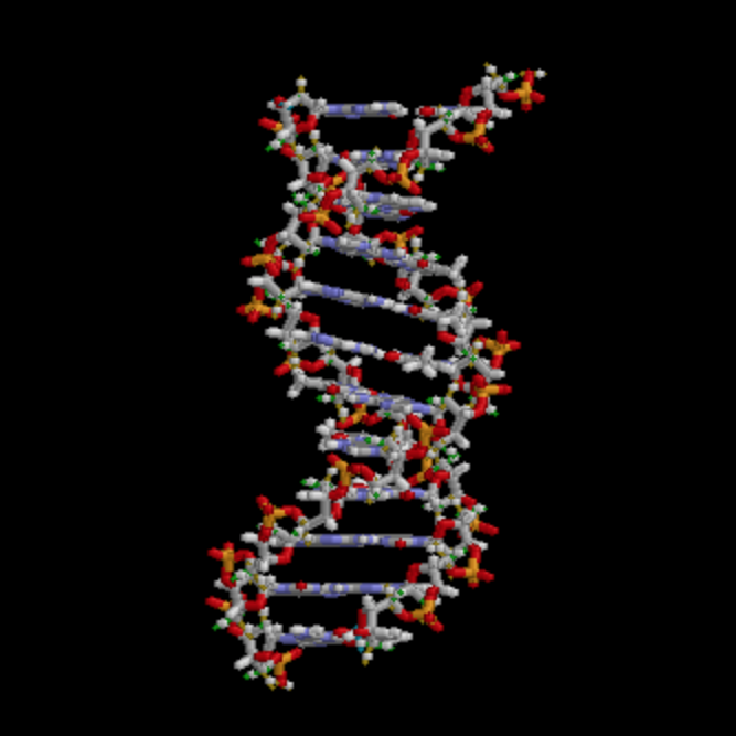 3D rendition of DNA strand